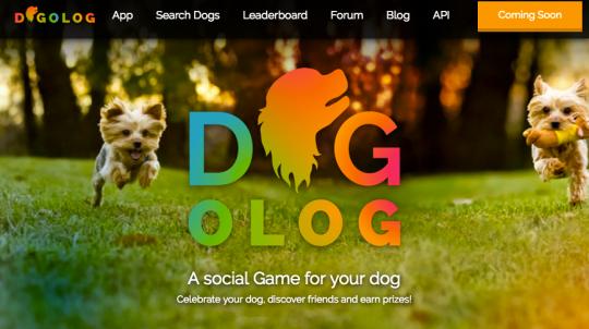 dogologwebsite